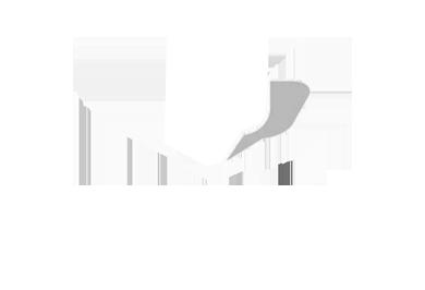 Blink-web